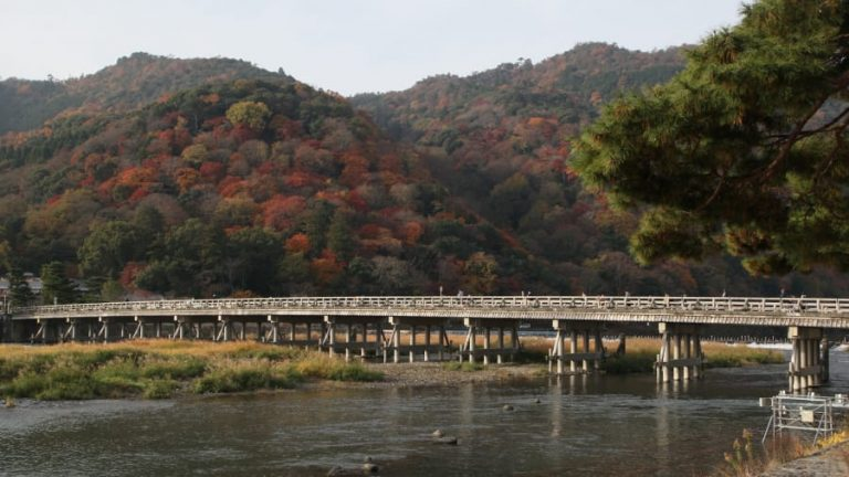 http---cdn.cnn.com-cnnnext-dam-assets-140810155913-12-sagano-bamboo-forest