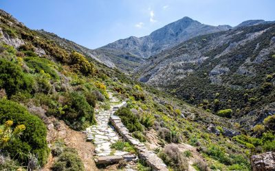 Mount-Zas